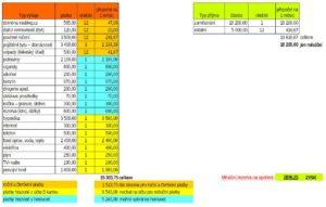 vyhodnocení - zisk